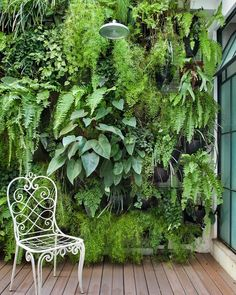 Let your garden grow… up  ||  @pinterest #dansplants
