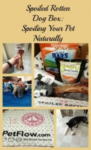 Spoiled Rotten Dog Box Review: Spoiling Your Pet Naturally