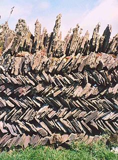 Cornish Zigzag Drystone Wall - there are so many of these around Cornwall - but…