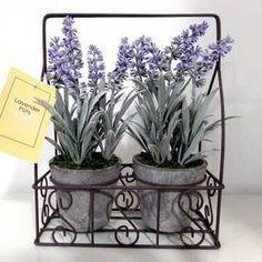 Pair of Lavender Pots in Wire Crate