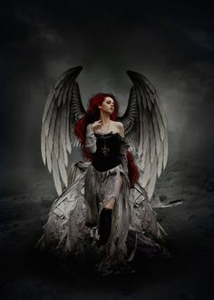 Immagine di angel and red