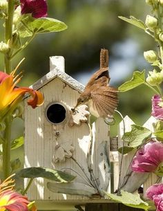 Cute bird house with tiger lilies, hibiscus and a hummingbird to enjoy it all.