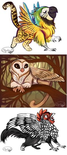 Griffins? by sharkie19 on DeviantArt<<Screams because the bottom one looks so much like my chicken :0