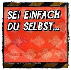 https://www.facebook.com/FreundlichAbnicken/photos/a.209232062496604.54216.207049912714819/1017559498330519/?type=3