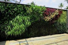 Es una cuestión pendiente, cada vez me gustan más los jardines verticales. ¡Quiero uno!