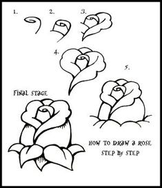 How To Draw flowers | Daryl Hobson Artwork: How To Draw A Rose: Step By Step Guide by Beth Huet