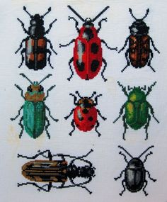 cross stitch bugs