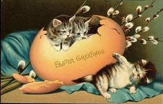 Easter Fabric Block Vintage Postcard Kitty Cat Greeting