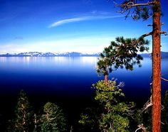 I'd love to visit South Lake Tahoe again. It brings back so many special family memories and it is a very beautiful place. It has activities to do all year round with a gorgeous lake to use during the summer-spring-fall seasons and a beautiful mountain to enjoy during the winter. I definitely recommend this place!