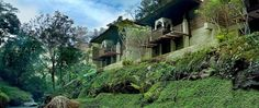 Unieke kook- en lifestyle reis naar Bali met Travelair reizen