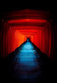 Torii gate of Fushimi Inari shrine, Kyoto, Japan