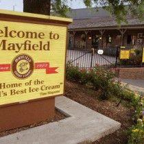 Visiting Mayfield a dairy in Bradenton, GA