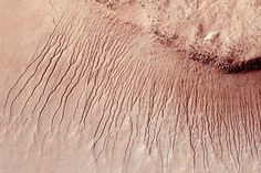 It's Official! There's Water on Mars! -- NYMag