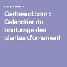 Gerbeaud.com : Calendrier du bouturage des plantes d'ornement