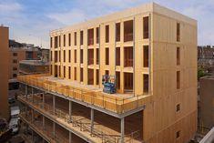 Bilderesultat for cross laminated timber Delft, Outdoor Balcony, Outdoor Decor, Sedum Roof, Roof Insulation, Floor Slab, Timber Buildings, Steel Columns, Brickwork