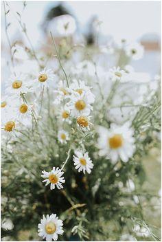 Wildflower Wedding Decor | The Budget Savvy Bride
