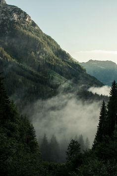 Coffee in the mountains. — nature & vintage blog