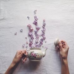 marina malinovaya floral tea story flower teacup photography tea kettle