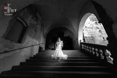 Wedding Day Weddings Your Big Day Wedding Dress Train, Wedding Dresses, Wedding Venues, Wedding Day, Bride Portrait, Amazing Weddings, Black And White Photography, Wedding Pictures, Wedding Planner