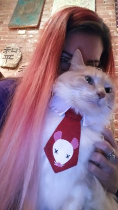 Lyra and the pink haired boss lady Boss Lady, Ice, T Shirts For Women, Cats, Fashion, Gatos, Moda, Fashion Styles, Ice Cream