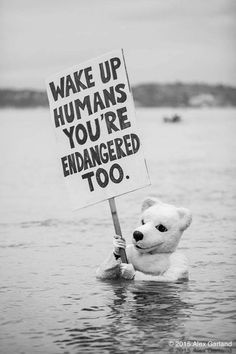 Svegliatevi Umani anche Voi siete a rischio di estinzione ! Noi siamo un tutt uno con il mare la terra la natura; dobbiamo svegliarci davvero! leggi, chiedi, informati, fai scelte consapevoli ; non usare Acqua in bottiglie di plastica, manga locale, coltiva orti in citta e Giardini, piñata Alberi tanti Alberi, curtail, inset a I piccoli a I Giovani a i tutti di tornare alla ricerca della Natura nella vita di tutti i giorni.Fallo, questo vuole dire il cartello!