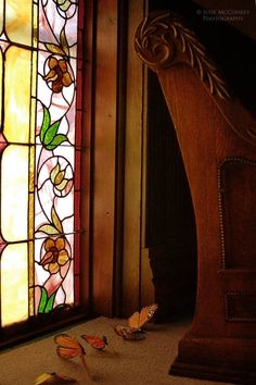 church stained glass windows butterflies by judeMcConkeyPhotos