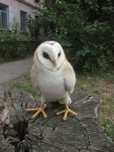 life sized barn owl sculpture. The pictured owl is 32 cm tall, made of wool and wire. her paws have wire armature and covered with cotton threads. Her eyes are made of polymer clay and painted with acrylic