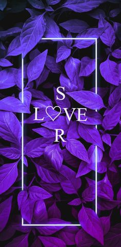 Alphabet Wallpaper, Name Wallpaper, Phone Wallpaper Images, Love Wallpaper Download, Pink Glitter Wallpaper, Mom And Dad Quotes, Wallpaper Nature Flowers, Stylish Alphabets, Hacker Wallpaper
