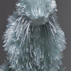 Shattered Glass Animal