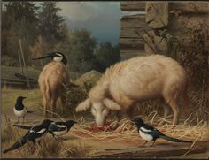 Pigs and Magpies, 1875 Ferdinand von Wright, Finnish National Gallery Wright Brothers, Flora And Fauna, Ferdinand, Magpie, Science And Nature, Pet Birds, Finland, Horses, Pigs