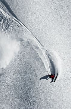 Skier carving in fresh snow