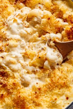 Creamy Garlic Parmesan Mac And Cheese in ONE POT   https://cafedelites.com