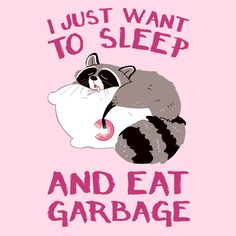 Too bad you can't do both at the same time! There's nothing better than a great nap and a deliciously fattening snack. It's so great that for some, it's a way of life! Share your lazy lifestyle with this sleepy raccoon. Raccoon Drawing, Raccoon Art, Animal Drawings, Cute Drawings, Cheesy Memes, Sleeping Animals, Animal Doodles, Bullet Journal Books, Animal Memes