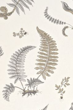 GP and J Baker Fern wallpaper and fabric #leafdesign #GP&JBaker