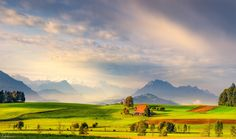 The shire -