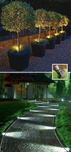 Solar spotlights will make your garden or yard look amazing at night.: