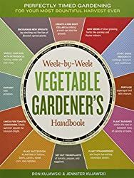How to Grow Your First Vegetable Garden (Right Now) | Empress of Dirt#dirt #empress #garden #grow #vegetable Gardening Books, Gardening Tips, Container Gardening, Texas Gardening, Gardening Supplies, Bountiful Harvest, Strawberry Plants, Strawberry Fields, Gardens