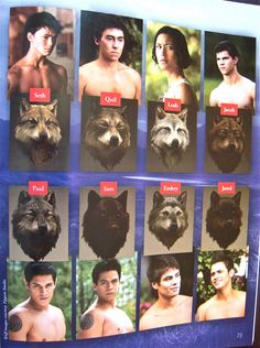 Not werewolves but they are animorphs Jacob Black, Twilight Pictures, Howl At The Moon, Wolf Spirit, Twilight Saga, Werewolf, Hunger Games, Pikachu, Movie Posters