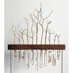 "grow     ATAURI Bosque cautivoBronce, madera, raíces y resina de poliester16"" x 16"" aprox. © 2013 www.bpap.es"