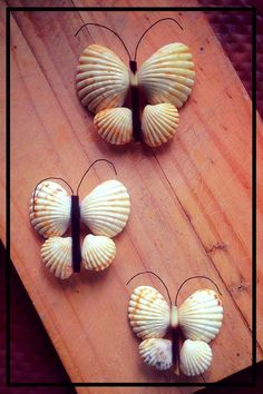 Thambapanni Pages (තම්බපණ්ණි පේජස්) is under construction Seashell Crafts Kids, Seashell Projects, Sea Crafts, Nature Crafts, Diy Home Crafts, Creative Crafts, Crafts For Kids, Baby Crafts, Sewing Crafts