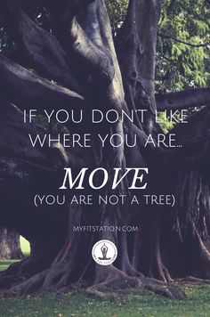 If you don't Like where you Are, MOVE, you ae not a Tree – www.myfitstation.com #quote #life #change