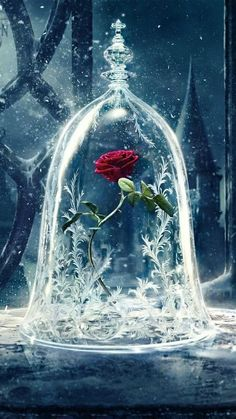 Beauty and the Beast is almost here! Get your devices ready with these enchanting phone, tablet, and computer Beauty and the Beast wallpapers. disney Add Some Magic To Your Devices With These Beauty and the Beast Wallpapers Wallpaper Iphone Disney, Galaxy Wallpaper, Wallpaper Backgrounds, Trendy Wallpaper, Beauty And The Beast Wallpaper Iphone, Rose Wallpaper, Screen Wallpaper, Kingdom Hearts Wallpaper Iphone, Beautiful Wallpaper