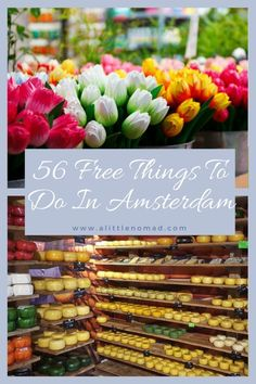 The most comprehensive list of Free Things To Do In Amsterdam: From free museums, cheese sampling & catboats to free diamond tours and a cannabis college! Amsterdam City, Amsterdam Travel, Amsterdam Netherlands, Amsterdam Itinerary, Visit Amsterdam, Backpacking Europe, Tales Of The Unexpected, Dam Square, Travel