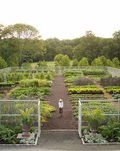 the vegetable garden at marthas