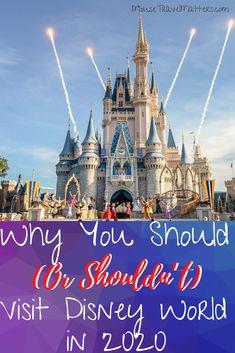 Disney World Secrets, Disney World Parks, Disney World Planning, Disney World Tips And Tricks, Disney World Vacation, Disney Tips, Disney Cruise Line, Disney Vacations, Disney Travel