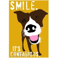 Smile Dog Art Wall Decor for the Dog Lover, Smile Maker and a Day Brightener. $14.00, via Etsy.