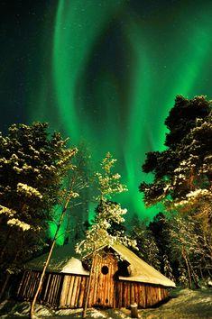 aurora november 12/12