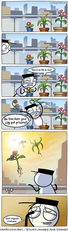 Plants Deserve Better