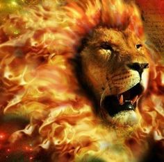 Jesus came the first time as the Lamb. Next time He is coming as the Lion of Judah. And one of the elders saith unto me, Weep not: behold, the Lion of the tribe of Judah, the Root of David, hath prevailed to open the book, and to loose the seven seals thereof. Revelation 5:5 But by that time if your name is not in that book, it will be to late...