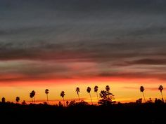 Sunset in South Pasadena, CA  -- Cell phone pic